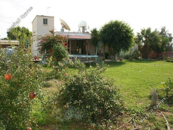 3 bedroom bungalow for sale paralimni famagusta 227941 image 242671