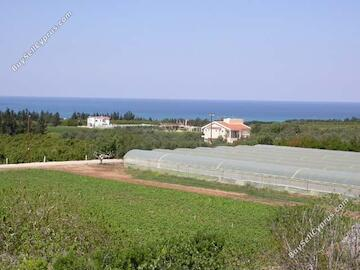 plot for sale emba paphos 621991 image 308456
