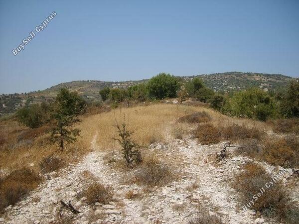 land for sale trahipedoula paphos 231953 image 278806