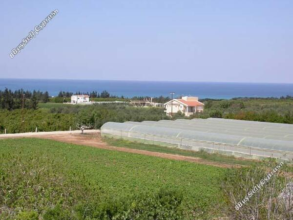land for sale emba paphos 697893 image 519934