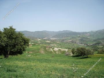 land for sale agios demetrianos paphos 232856 image 283407
