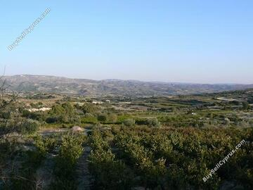 land for sale polemi paphos 232718 image 282618